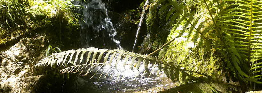 Cascadas de Retumbia
