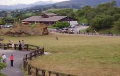 Parque de la Naturaleza de Cabárceno, referente mundial en programas de investigación
