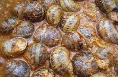 Deliciosos caracoles en las fiestas de San Andrés