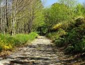 Calzada Romana de Cildá Parte de la Calzada Cantabria Cantabriarural