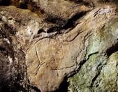 Cueva Hornos de la Peña Cantabria Cantabriarural