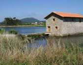 Molino de las Aves de Noja Cantabria Cantabriarural