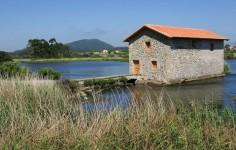 Molino de las Aves de Noja. Parque Natural de las Marismas de Santoña, Victoria y Joyel