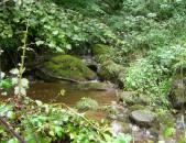 Nacimiento del río Gándara Cantabria Cantabriarural