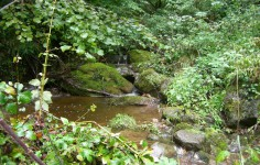 Nacimiento del Rio Gándara