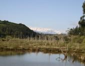 Parque natural de Oyambre Cantabria Cantabriarural