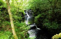 Ruta Las cascadas del Arroyo Viaña Cabuérniga Cantabria Cantabriarural