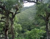 Senderismo en Liebana Picos de Europa 2 De potes a Porcieda y Ermita de Valmayor Cantabria Cantabriarural
