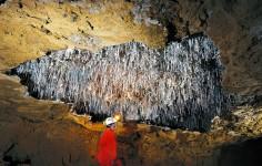 Visita Turismo Aventura Cueva El Soplao