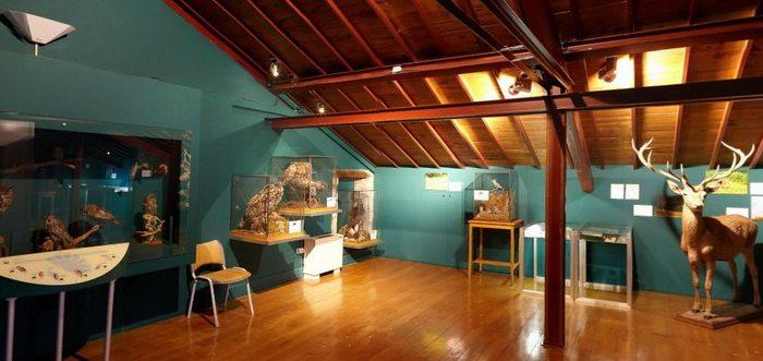 Museo de la Naturaleza de Cantabria Cantabriarural