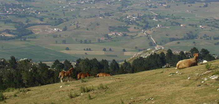 Cantabria en Bici Subida a Pena Cabarga