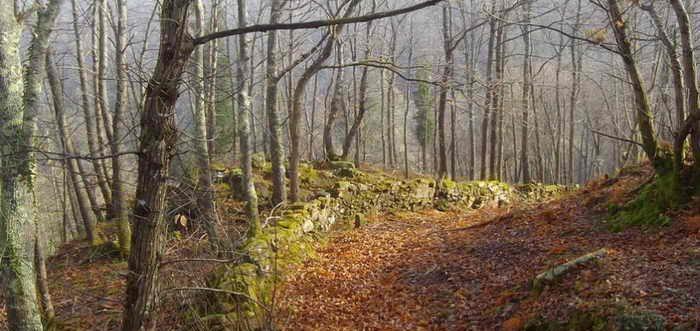 Monte Tejea Valle de Villaverde, Rutas por el Monte Tejea Cantabria