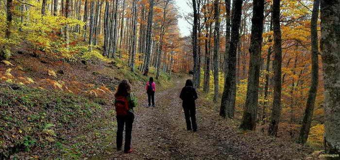 Ruta circular en el Monte Hijedo desde Riopanero,Ruta por el Monte Hijedo Cantabria
