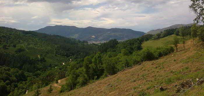 Yacimiento Arqueologico el Canton en San Felices de Buelna Cantabria