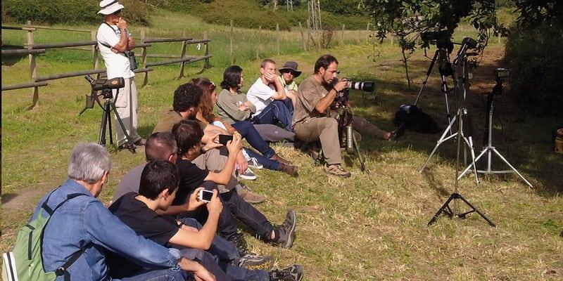 XII Festival de la Migración de las Aves en el Parque Natural Marismas de Santoña, Victoria y Joyel