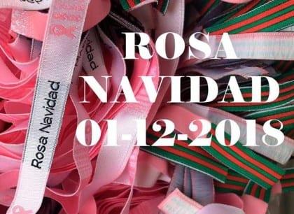 Rosa Navidad 2018