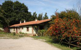 Casa rural junto a Cabarceno 20 % de descuento en Enero