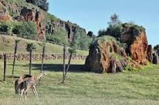 OFERTA case rural en CANTABRIA junto a CABARCENO