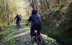 Natur Track